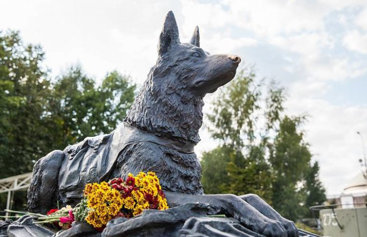 В Москве почтят память четвероногих бойцов