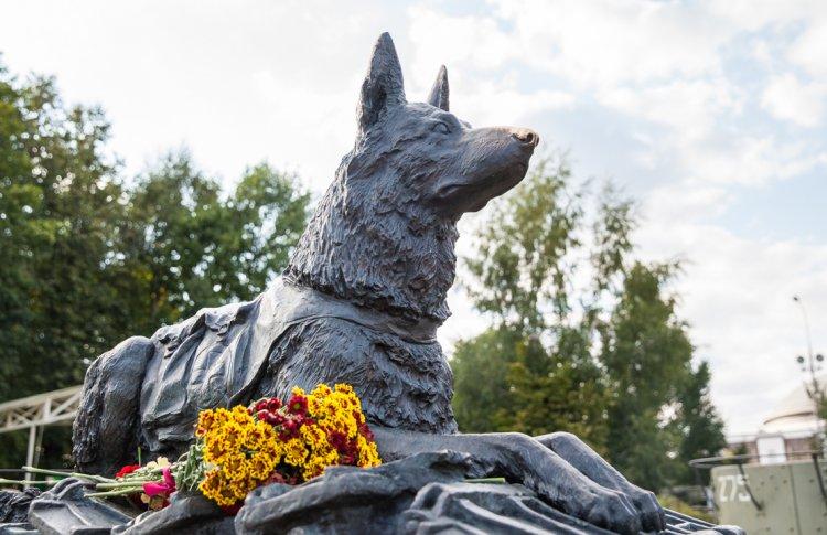 В Музее Победы пройдет День фронтовой собаки