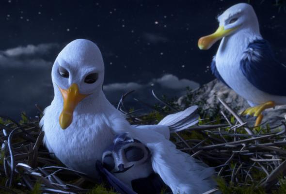 Птичий дозор2019 - Фото №5