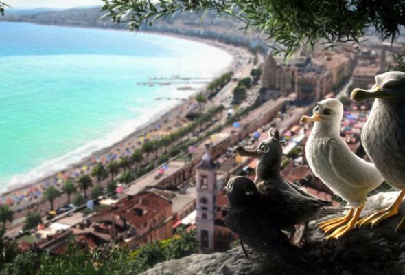Птичий дозор2019 - Фото №1