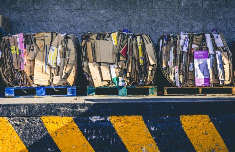 Шаг 3. Собираем отходы раздельно и правильно утилизируем органику