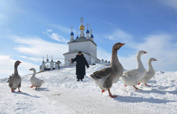 Nikon объявил победителей всероссийского ежегодного конкурса
