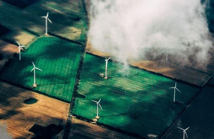 Человек и экология: как спасти планету