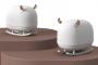 5 красивых увлажнителей воздуха, которые изменят вашу жизнь