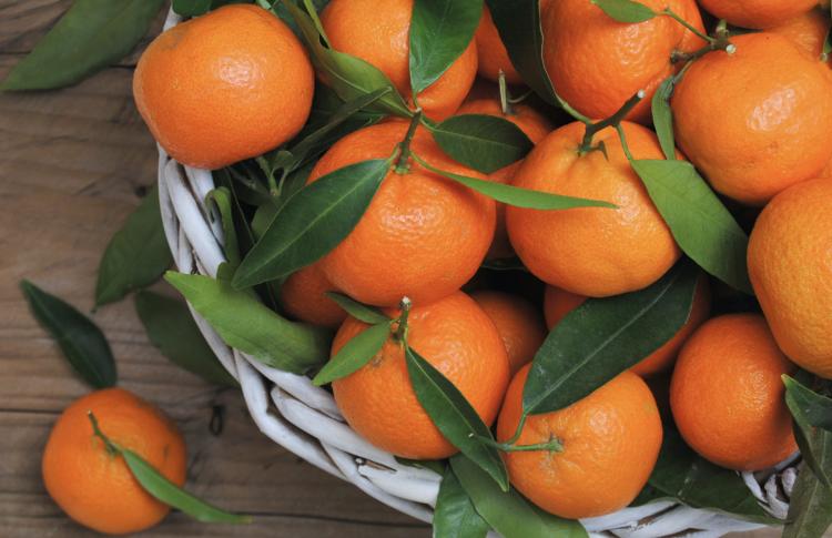 Москвичи съедают за год более 50 тонн мандаринов