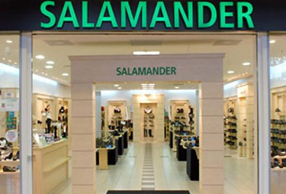 Salamander - Фото №0