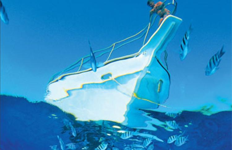 Карибы: море, солнце, свобода