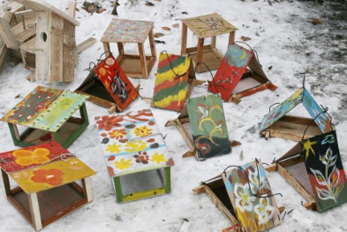 Молодежный экологический фестиваль