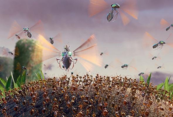 Гроза муравьев - Фото №7