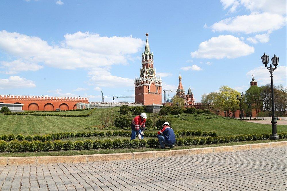 мне долго кремлевский сквер в москве фото кого-то парней