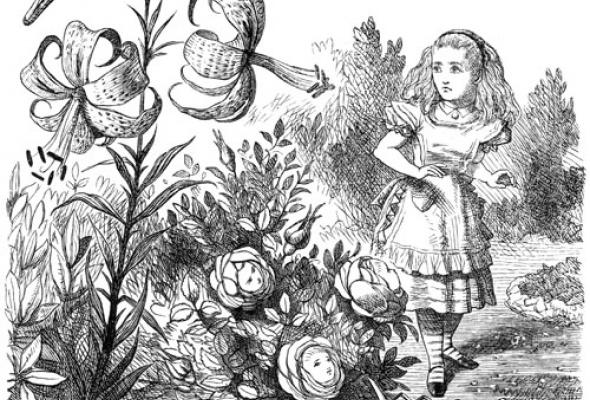 важно иллюстрации джона тенниела к алисе в стране чудес этом году группу