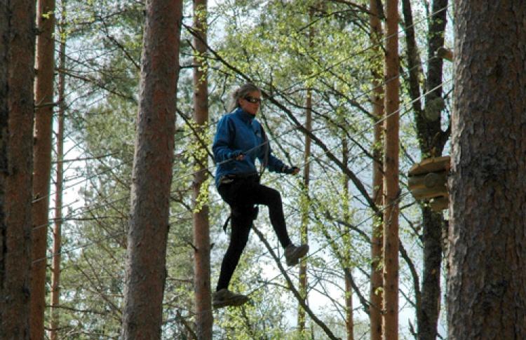 Норвежский парк «Орех»