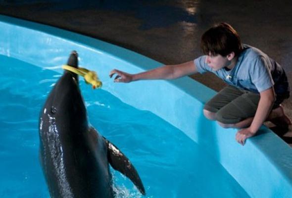 История дельфина - Фото №7