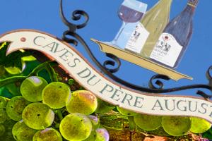 Вина Франции и Нового Света