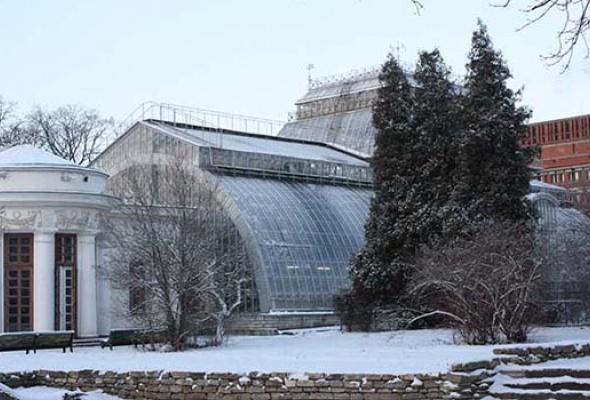 Ботанический сад Петра Великого - Фото №3
