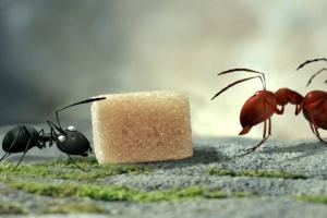 Букашки. Приключение в Долине муравьев