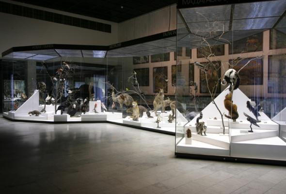 Дарвиновский музей - Фото №4