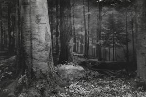 Хироси Сугимото «Прошлое и настоящее в трех частях»