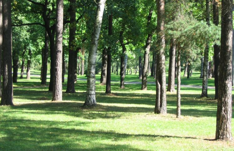 Мировые хиты в парке Сосновка