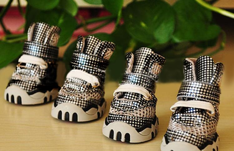 Ботинки для прогулок. Из чего выбирать и как приучать к носке обуви