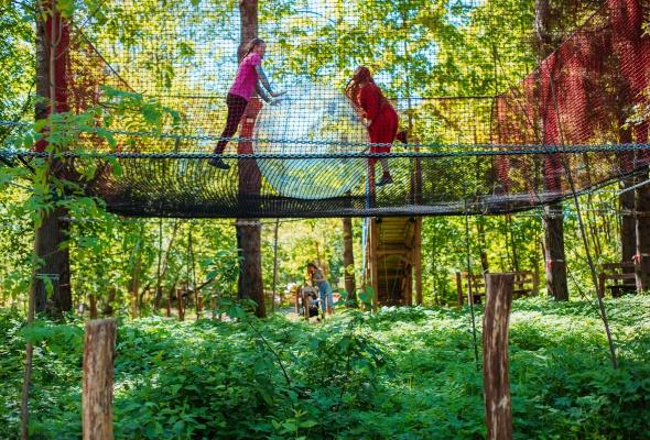 Парк для семейного отдыха «Озорные белки» - Фото №6