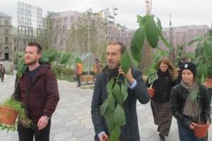 Децл подарил «Зарядью» два дерева авокадо. Он вырастил их из косточек