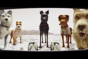 Остров собак