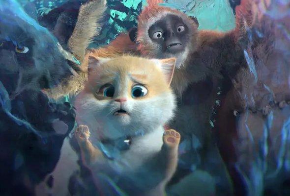 Большой кошачий побег - Фото №4