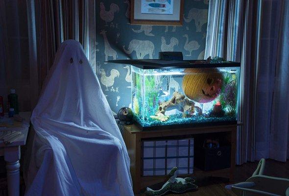 Хэллоуин - Фото №1