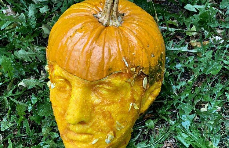 «Аптекарский огород» устраивает выставку голов к Хэллоуину