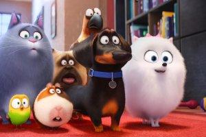 «Тайная жизнь домашних животных-2». Щенячьи глазки