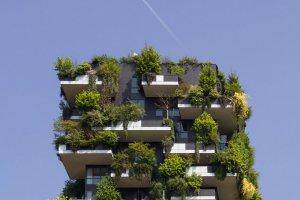 8 шагов к экологичному образу жизни