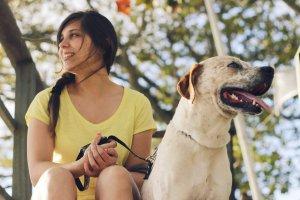 Как понять, что вы готовы завести домашнее животное