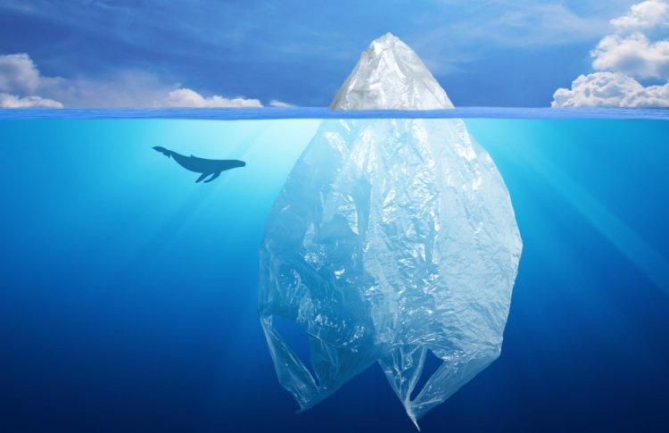 Роспотребнадзор намерен запретить пластиковые пакеты