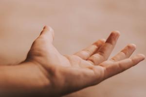 8 хороших кремов для рук