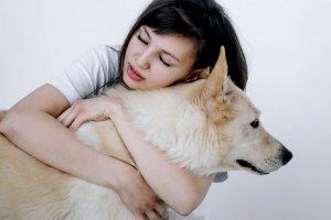 5 мифов о животных из приютов