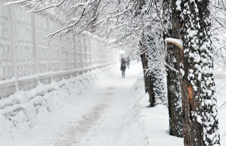 В этом году нас ждет теплая зима?