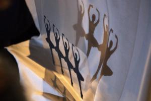 ShadowFest – в Москве открылся международный фестиваль театров теней