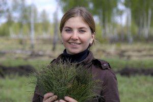 Экологи предложили новогоднюю посадку елей вместо вырубки