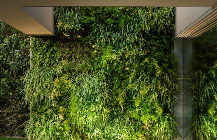 Зеленая книга: современные эко-архитектура и эко-дизайн
