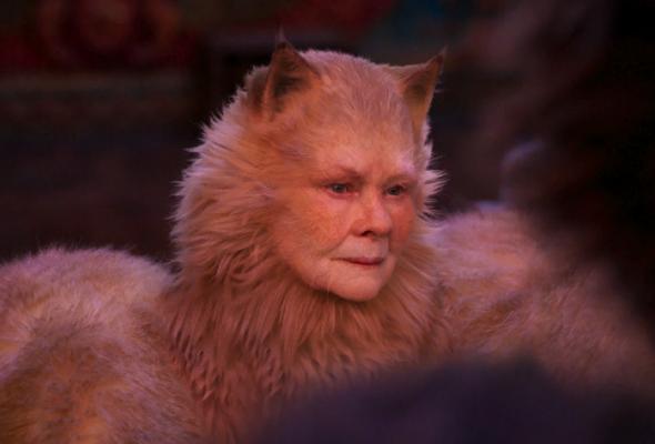 Кошки 2020 - Фото №0