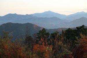 Удивительная Япония: экскурсия на гору Такао