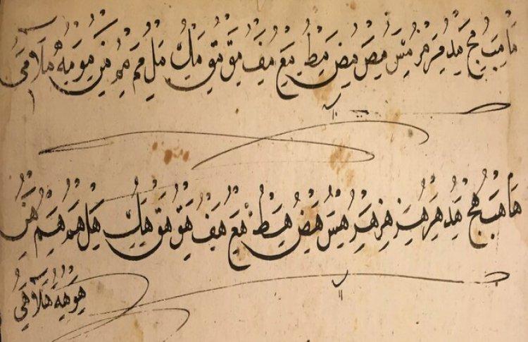 Суфизм без границ. Накшбандийский шейх Ахмед Гюмюшханеви (1813-1893) и его рукописи