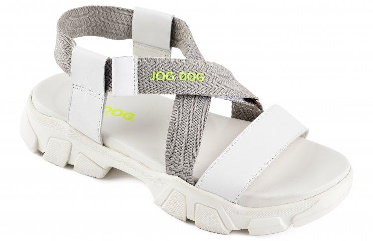 Now to the future с новой коллекцией Jog Dog