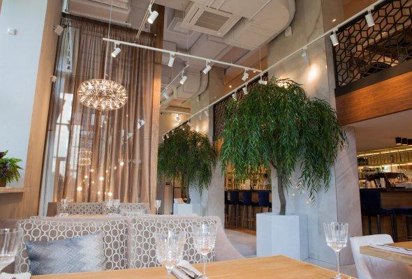 Ресторан River - Фото №0