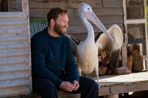 5 фильмов о дружбе людей и животных
