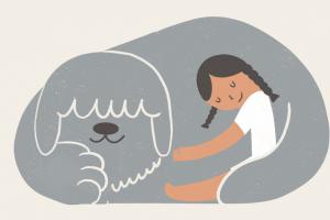 Вторая волна онлайн-марафона по поиску дома для животных из приютов уже началась