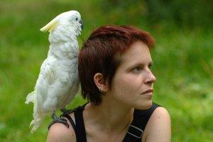 «Наша задача — лечить и помогать»: интервью с московскими ветеринарами