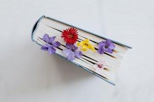 56 отличных книг от 7 книжных блогеров