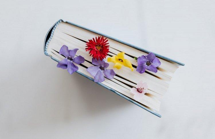 Список на лето: 56 отличных книг от 7 книжных блогеров